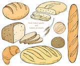 Set with bakery products on a white background. Baguette, loaves, rye bread, ciabatta and scones. Vector illustration in sketch style. - 213804118