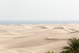 Dünenlandschaft auf Gran Canaria  - 213819370