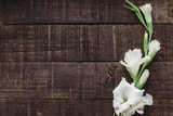 beautiful minimal white gladiolus on rustic wooden background top view. stylish gladioli on rustic brown wood, space for text, holiday greeting card. minimalistic floral flat lay, spring image - 213836368