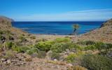 Wild cove in the Cabo de Gata-Níjar natural park, Cala de los toros near La Isleta del Moro, Mediterranean sea, Almeria, Andalusia, Spain - 213930700
