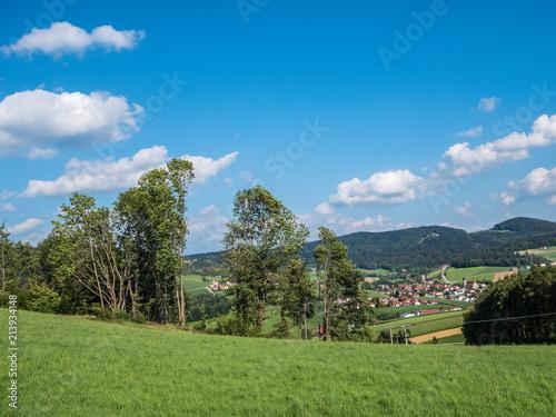 Foto Murales Blick in den Bayrischen Wald