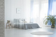 Leinwanddruck Bild - Round rug near bed under veil in blue and white bedroom interior with plant and stool. Real photo