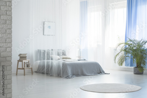 Leinwanddruck Bild Round rug near bed under veil in blue and white bedroom interior with plant and stool. Real photo