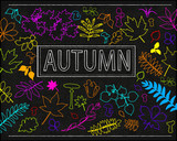 Vector background with autumn leaves on a black background