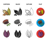 Dill, cocoa beans, basil.Herbs and spices set collection icons in cartoon,black,outline,flat style vector symbol stock illustration web. - 214001361