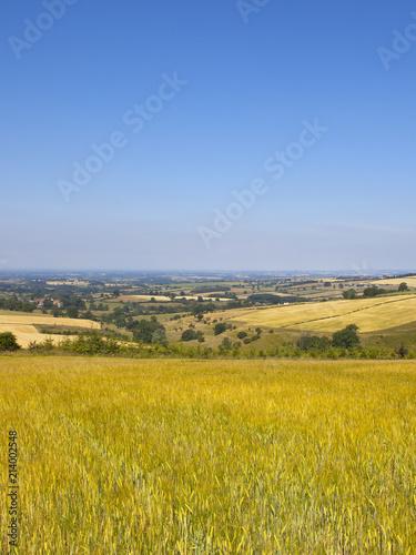Foto Spatwand Honing Vale of York vista