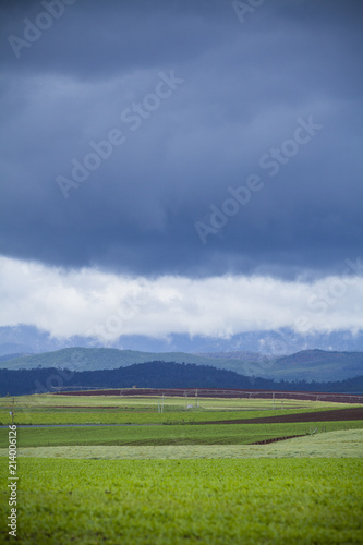 Foto Spatwand Lente Green Pasture, Mountains and stormy sky