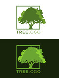 Green tree logo sign with tree sign in square frame vector art design