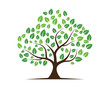 Logos of green Tree leaf ecology nature