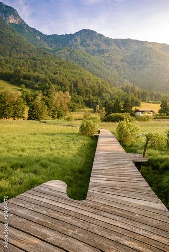 Foto Spatwand Honing Trentino, Italy