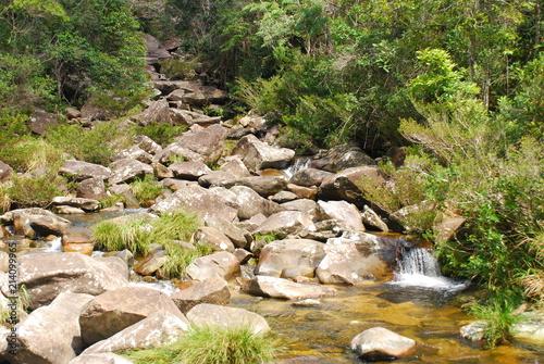Zatoczka wśród kamieni wśród roślinności, Brazylia
