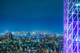 Asia Business concept for real estate and corporate construction - panoramic urban city skyline aerial view under twilight sky and neon night in tokyo, Japan - 214101167