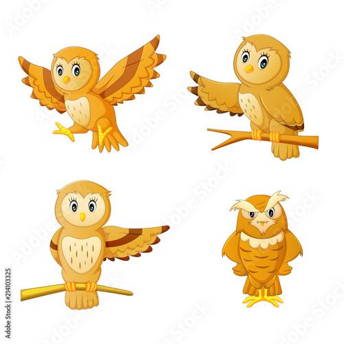 Fotobehang Uilen cartoon cute owl cartoon