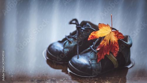 Leinwanddruck Bild Autumn season concept