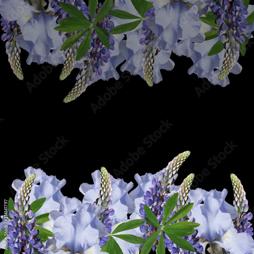 Canvas Iris Beautiful floral background of lupins and irises