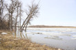 Early spring landscape. River melting in Manitoba, Canada.