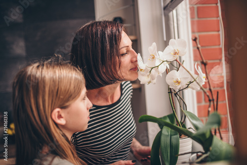 Fototapeta Mother and daughter checking orchid on the window