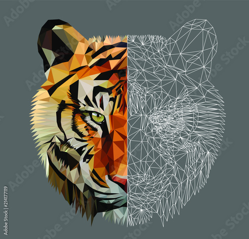 Fototapeta Low poly triangular tiger head on dark background, vector illustration EPS 10 isolated. Polygonal style trendy modern logo design. Suitable for printing on a t-shirt.