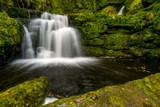 Lower Mclean Falls - 214181926