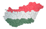 Flag and map of Hungary with flowers. Conceptual vector image, isolated on white
