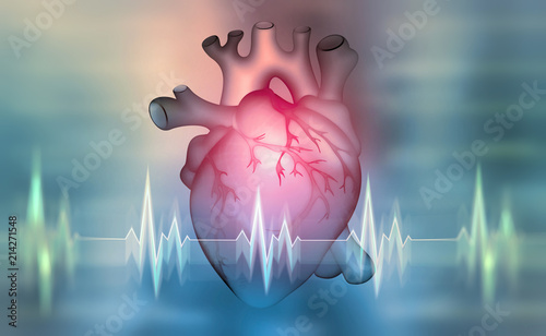 Human heart. 3D illustration on a medical background