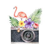 Watercolor vector card with camera, palm tree, flowers, tropical leaves and pink Flamingo isolated on white background. - 214314916