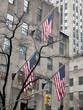 New York City Manhattan - 214349379