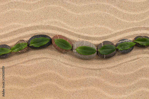 In de dag Zen Stenen Stones and green leaf on the sand with dunes and waves. Spa and zen concept.