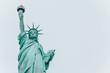 Freiheitsstatue - New York City Links Porträt