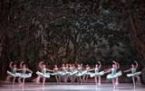 auditorium, view of the stage. ballet dancers silhouettes. Defocused entertainment concert lighting on stage.  - 214441737