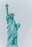 Freiheitsstatue Hochformat - Porträt Links - 214442124