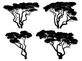 Set of silhouettes of African acacia trees. - 214467915