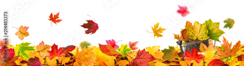 Leinwandbild Motiv autumn leaves background tendril