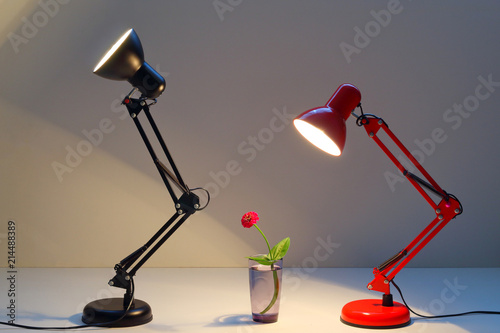 Red And Black Table Lamp Shining On A Red Flower And Warms With Its