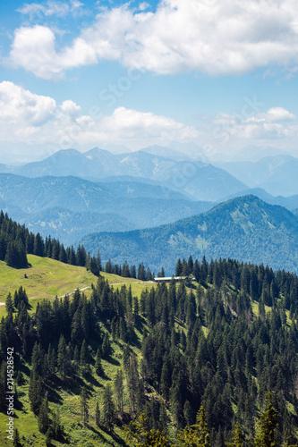 Canvas Blauw spring landscape, mountain valley, vertical photo, spring landscape, mountain valley, vertical photo