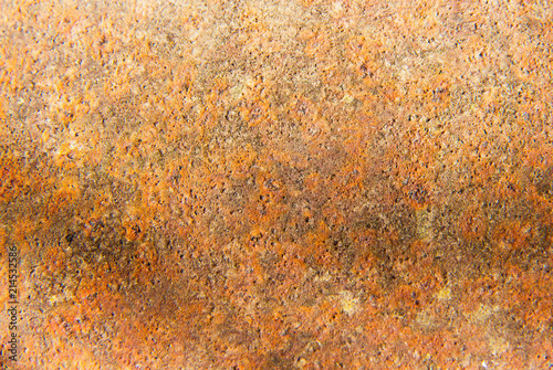 red and brown rusty metal texture on porous surface texture of rust