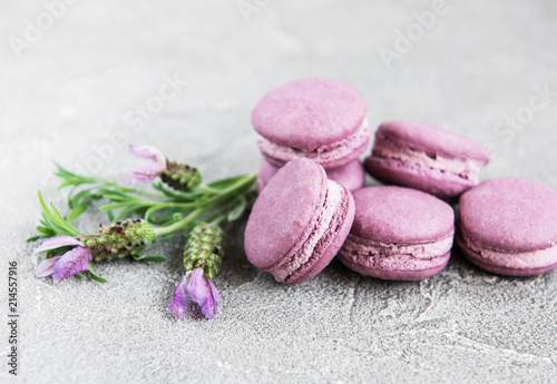 Plexiglas Macarons french macarons with lavender flavor
