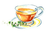 Medicinal herb Thyme. Cup of healthy tea. Infusion made from thyme leaves. Hand drawn watercolor illustration isolated on white background - 214575312