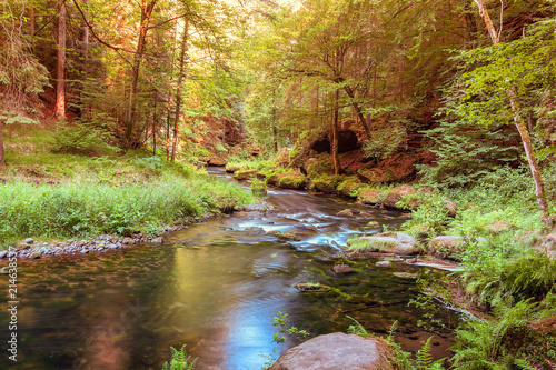 Foto Spatwand Bergrivier Peaceful scene of a small river or a brook flowing through woods in romantic valley in summer, pure untouched nature, long exposure.