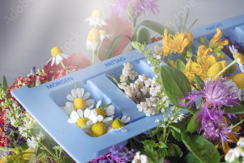 Foto Murales Heilpflanzen in einem Tablettenspender, Homöopathie, Naturheilkunde