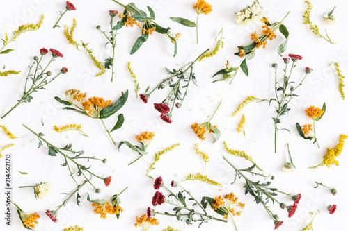 Jesienna kompozycja kwiatowa. Wzór robić świezi kwiaty na białym tle. Jesień, jesień koncepcja. Płaski lay, widok z góry
