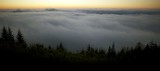 Scenic Foggy Landscape - 214763732