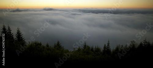 Sticker Scenic Foggy Landscape