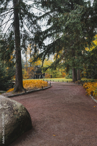 Fotobehang Herfst Idillic autumn landscape of park, lawn, yellow trees and lake