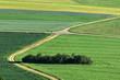 canvas print picture - Landschaft auf der Schwaebischen Alb; Aecker; Wiesen; Felder; Hecken;