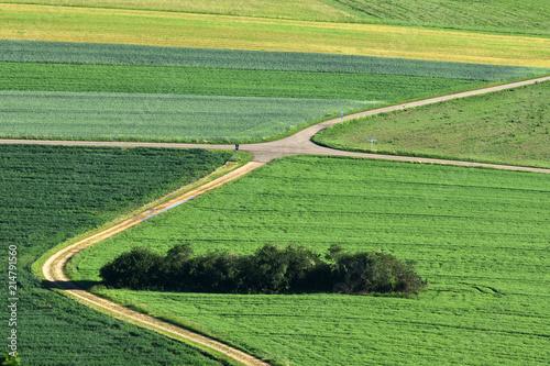 canvas print picture Landschaft auf der Schwaebischen Alb; Aecker; Wiesen; Felder; Hecken;