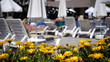 A yellow dandelion flower bed in the foreground. In the background, defocused people on sunbeds.