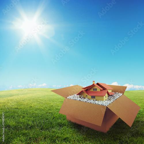 Leinwandbild Motiv House in a cardboard box. Concept of buying a dwelling. 3D Rendering