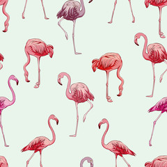 Seamless flamingos pattern, vector