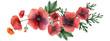Wild Poppy hand painted watercolor headline or ending vingette